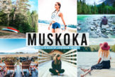 Last preview image of Muskoka Mobile & Desktop Lightroom Presets
