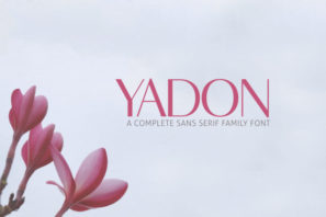 Yadon Sans Serif Fonts Family Pack
