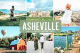 Last preview image of Asheville Mobile & Desktop Lightroom Presets