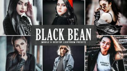 Black Bean Mobile & Desktop Lightroom Presets