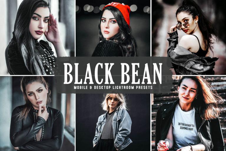 Preview image of Black Bean Mobile & Desktop Lightroom Presets