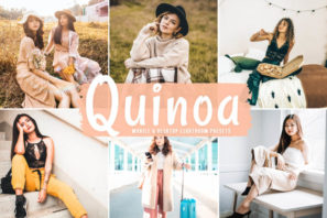 Quinoa Mobile & Desktop Lightroom Presets
