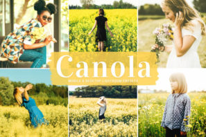 Canola Mobile & Desktop Lightroom Presets