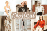Last preview image of Chestnut Mobile & Desktop Lightroom Presets