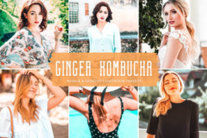 Ginger Kombucha Mobile & Desktop Lightroom Presets
