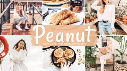 Peanut Mobile & Desktop Lightroom Presets