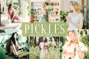 Pickles Mobile & Desktop Lightroom Presets