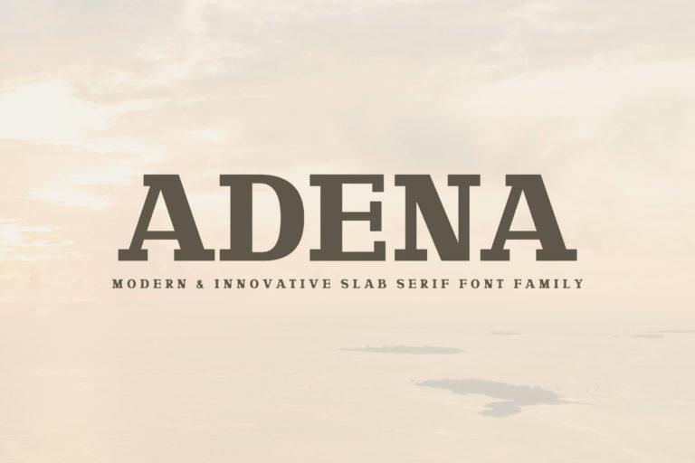 Preview image of Adena Slab Serif Font Family