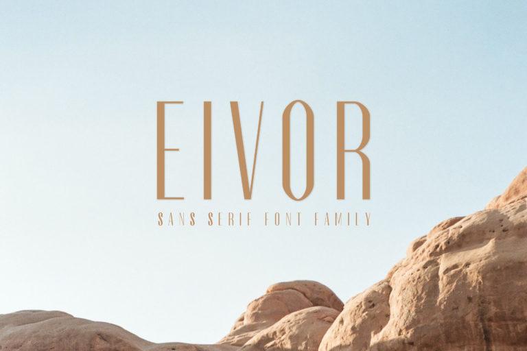 Preview image of Eivor Sans Serif Font Family