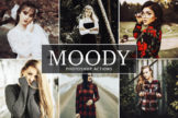 Last preview image of Moody Photoshop Actions