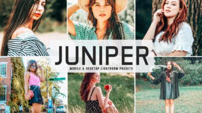 Juniper Mobile & Desktop Lightroom Presets