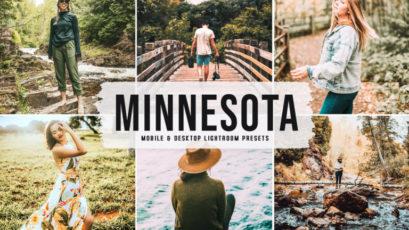 Minnesota Mobile & Desktop Lightroom Presets