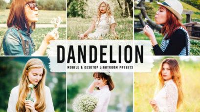 Dandelion Mobile & Desktop Lightroom Presets