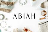 Last preview image of Abiah Sans Serif Font Family