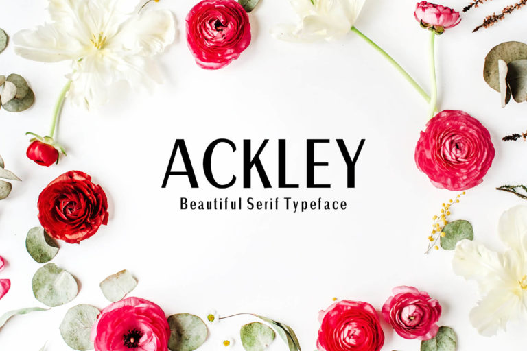 Preview image of Ackley Sans Serif Typeface