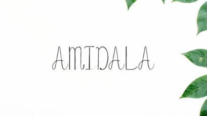 Amidala Script Font