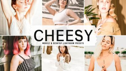 Cheesy Mobile & Desktop Lightroom Presets