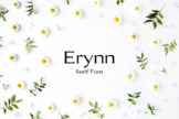 Last preview image of Erynn Serif Font
