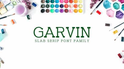 Garvin Slab Serif Font Family