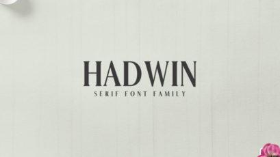 Hadwin A Serif Font Family Pack