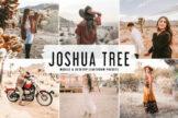 Last preview image of Joshua Tree Mobile & Desktop Lightroom Presets