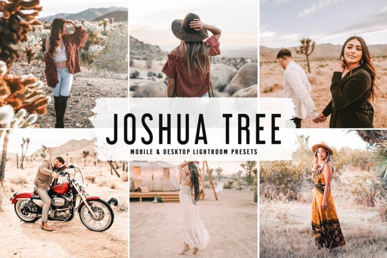 Preview image of Joshua Tree Mobile & Desktop Lightroom Presets