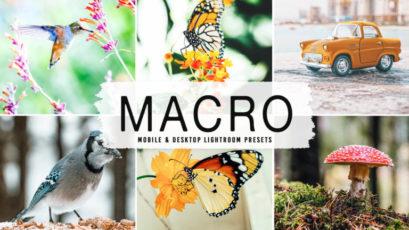 Macro Mobile & Desktop Lightroom Presets
