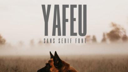 Yafeu Sans Serif Font Family